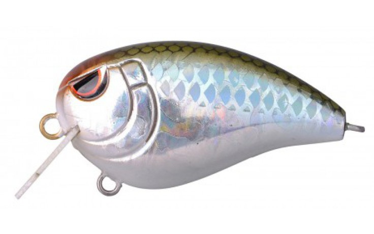 Spro Baby FAT John 50 Wobbler Blue Back Herring