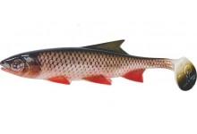 Clone Shad Döbel 15cm Angelköder Gummifisch zum Angeln auf Raubfische